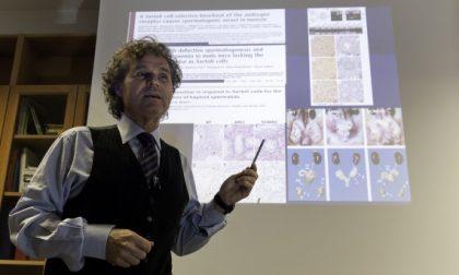 Pfas alterano la coagulazione del sangue, la scoperta a Padova