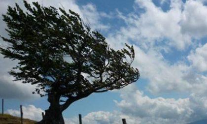 Veneto: il vento forte pulisce l'aria e fa abbassare le temperature