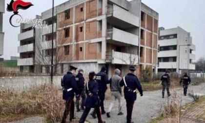 Padova: Carabinieri in azione nei condomini dello spaccio