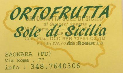 I negozi che consegnano la spesa a domicilio a Padova e Saonara: Ortofrutta sole di Sicilia
