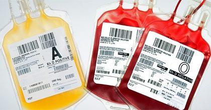 Padova: una speranza dalla terapia con il plasma dei guariti