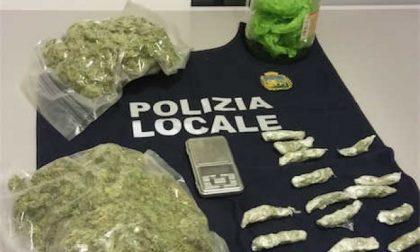 Padova: la polizia locale sequestra mezzo chilo di droga