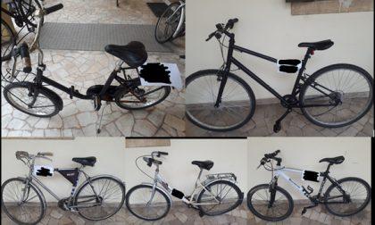 Questura di Padova: decine di biciclette rubate sequestrate agli spacciatori