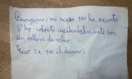 Rompe la pianta del vicino con una pallonata: bambino scrive una lettera di scuse e risarcisce il danno