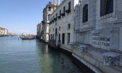 """Collezione Peggy Guggenheim: 400 ingressi nel giorno della riapertura. Karole P. Vail: """"Una ventata di energia e ottimismo"""""""