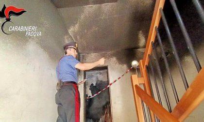Intervengono per l'incendio nella palazzina di Selvazzano e trovano 6 chili di marijuana