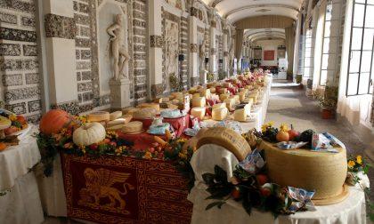 Caseus Veneti, evento che celebra la qualità: inaugura Zaia