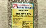 Ossido di etilene a rischio cancro nei semi di sesamo bio prodotti a Padova