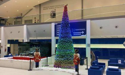 """Da Vo' è stato donato all'ospedale di Schiavonia un albero di Natale per dire """"grazie"""" ai medici"""