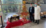 """All'ospedale di Piove di Sacco c'è il """"face tree"""", albero di Natale con i volti dei sanitari – Gallery"""