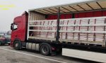 Pellet contraffatto, sequestrate 117 tonnellate di materiale: 19 denunciati – FOTO