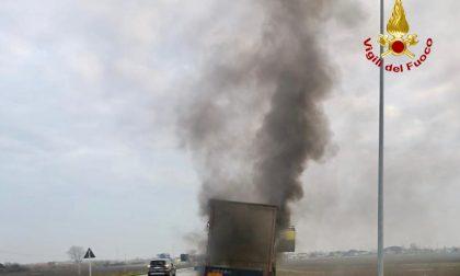 Paura sulla Romea all'altezza di Codevigo: semirimorchio di un camion in fiamme FOTO