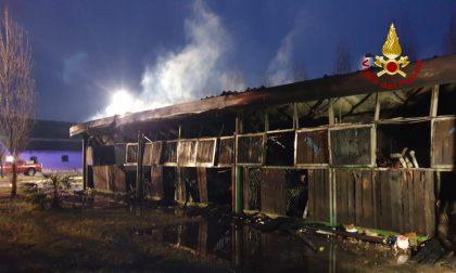 In fiamme un deposito di legna a Maserà: intossicata una persona