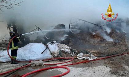 Le foto dell'incendio all'azienda agricola di Fontaniva: bruciato il deposito di foraggio