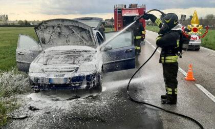 L'auto prende fuoco lungo la provinciale, il guidatore salta giù appena in tempo