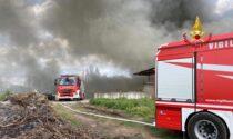 """Devastante incendio all'allevamento avicolo, """"strage"""" di polli: 4mila animali morti"""