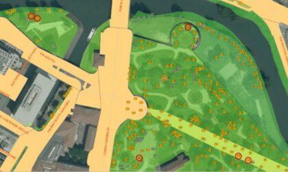 Giardini dell'Arena, dieci alberi a rischio crollo saranno tagliati e sostituiti