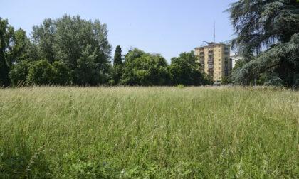 Basta cemento, Padova esempio per tutti: compra area dismessa in centro per farci un parco