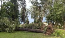 Il maltempo non risparmia nemmeno Villa Contarini a Piazzola sul Brenta, ora la conta dei danni