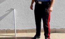 Cane ucciso senza pietà a bastonate in testa: 75enne denunciato