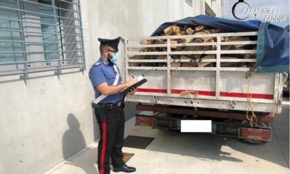 """Truffa della legna a Legnaro ma arriva una """"legnata"""": arrestati (e già liberi)"""