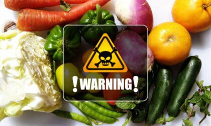 Pfas (e non solo): contaminazioni accertate nelle coltivazioni e negli animali allevati