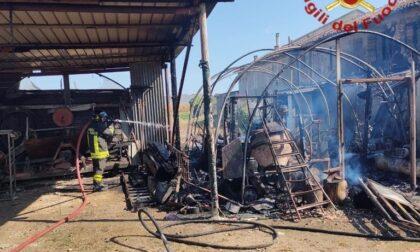 Incendio in una baracca in campagna, feriti due animali
